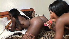 She gives her lesbian lover's black snatch a poke with a double dildo and her fingers