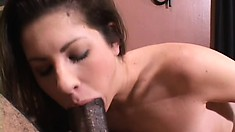 Sexy brunette works her lips up and down a black rod until it explodes with pleasure