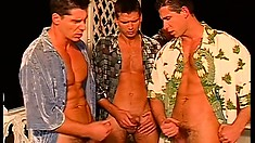 A group of horny studs with ripped bodies take turns blowing each other's dicks