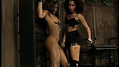 Black Dominatrix ties her down for torture and flogging until she cums
