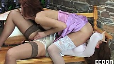 Pleasant bimbo Theodora lifts her dress up and gets boned by Jennifer