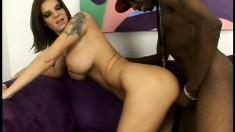 Buxom milf Kayla needs nothing but a black shaft banging her anal hole