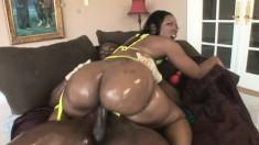 Ebony hottie with a big round booty Cherokee wildly fucks a black dick