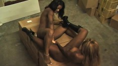 Black lesbians meet in the back room for some hot licking and toying