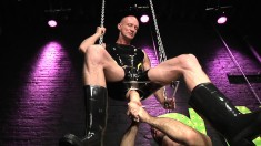 Sex swing, fresh asshole and a big toy and fist going deep within
