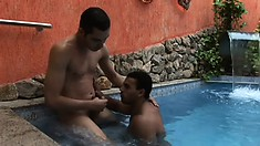 Hard as fuck studs give each other a deep railing at the pool