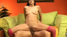 Glamorous big ass brunette sucks big pipe and gets back door fuck