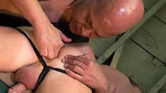 Older studs Randy Summers and Jeff Campbell love some ass-plowing