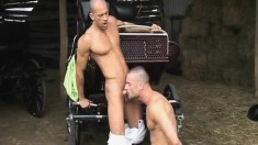 Three muscled and lustful studs indulge in hot gay action in the barn
