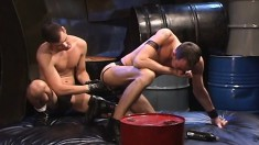 Anal-loving stallion bends over and begs to have his ass stretched